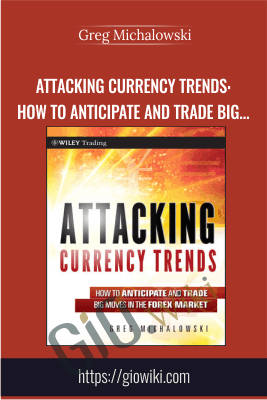 Attacking Currency Trends: How to Anticipate and Trade Big Moves in the Forex Market - Greg Michalowski