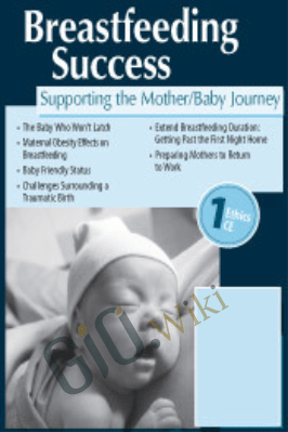 Breastfeeding Success: Supporting the Mother/Baby Journey - Dawn M. Kersula