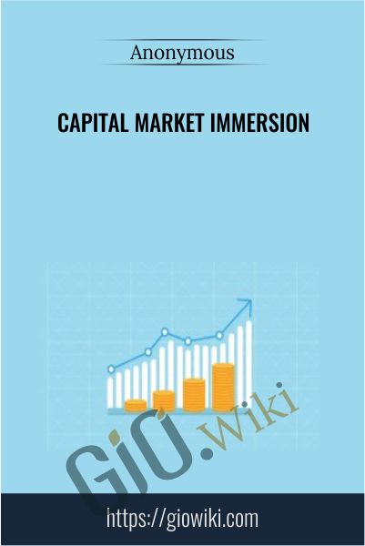 Capital Market Immersion