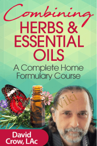 Combining Herbs & Essential Oils - David Crow, LAc