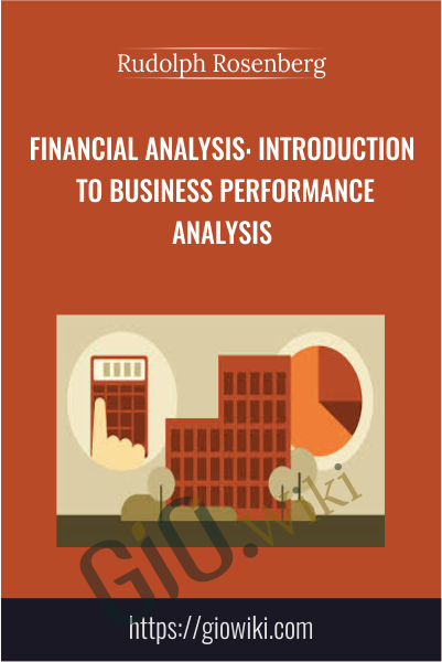 Financial Analysis: Introduction to Business Performance Analysis - Rudolph Rosenberg