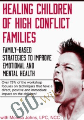 Healing Children of High Conflict Families: Family-Based Strategies to Improve Emotional and Mental Health - Monica Johns