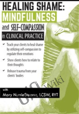 Healing Shame: Mindfulness and Self-Compassion in Clinical Practice - Mary NurrieStearns