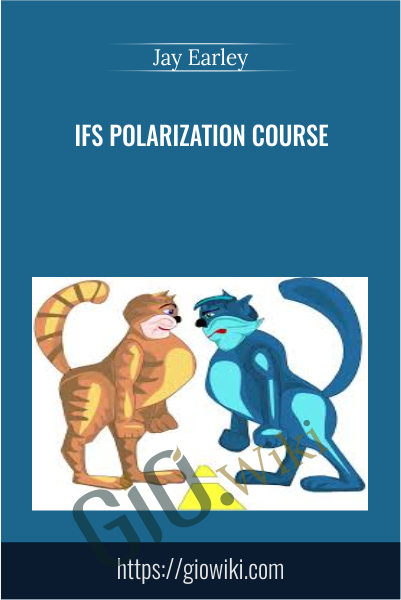 IFS Polarization Course - Jay Earley