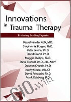 Innovations in Trauma Therapy Conference - Bessel Van der Kolk ,  David Feinstein & others