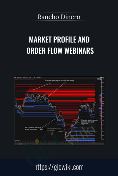 Market Profile and Order Flow Webinars - Rancho Dinero