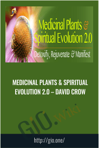 Medicinal Plants & Spiritual Evolution 2.0 – David Crow