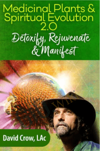 Medicinal Plants & Spiritual Evolution 2.0 - David Crow, LAc