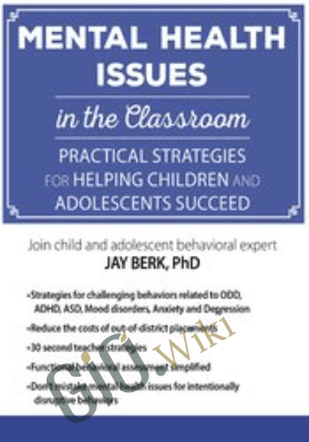 Mental Health Issues in the Classroom: Practical Strategies for Helping Children and Adolescents Succeed - Jay Berk
