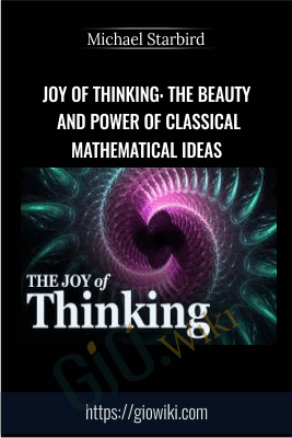 Joy of Thinking: The Beauty and Power of Classical Mathematical Ideas - Michael Starbird