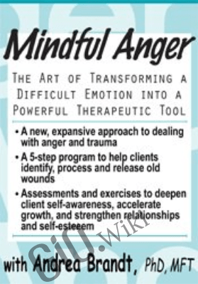 Mindful Anger: The Art of Transforming a Difficult Emotion into a Powerful Therapeutic Tool - Andrea Brandt