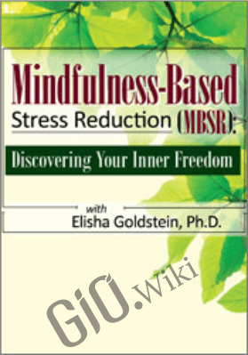 Mindfulness-Based Stress Reduction (MBSR): Discovering Your Inner Freedom with Elisha Goldstein, Ph.D. -  Elisha Goldstein