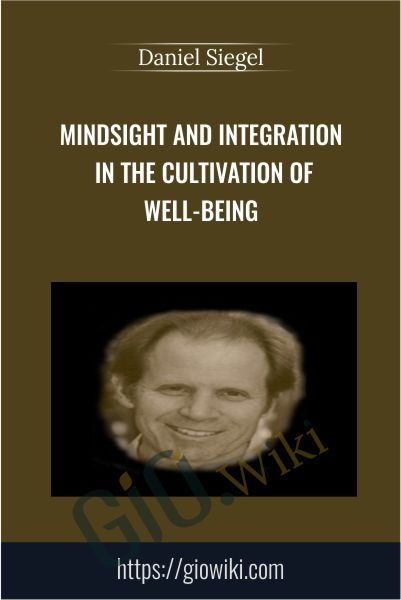 Mindsight and Integration in the Cultivation of Well-Being - Daniel Siegel