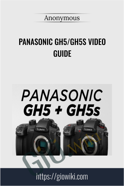 Panasonic GH5/GH5s Video Guide