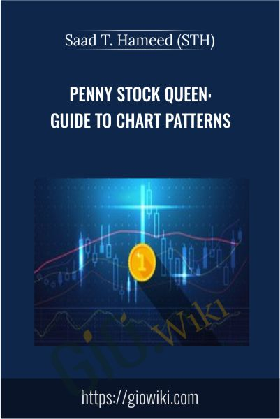 Penny Stock Queen: Beginner Guide to Chart Patterns - Saad T. Hameed (STH)