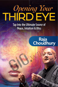Opening Your Third Eye - Raja Choudhury