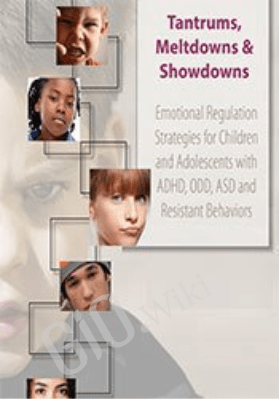 Tantrums, Meltdowns & Showdowns: Emotional Regulation Strategies for Children & Adolescents with ADHD, ODD, ASD and Resistant Behaviors - Susan Epstein