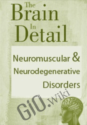 The Brain in Detail: Neuromuscular & Neurodegenerative Disorders - SEAN G. SMITH & BONITA GORDON
