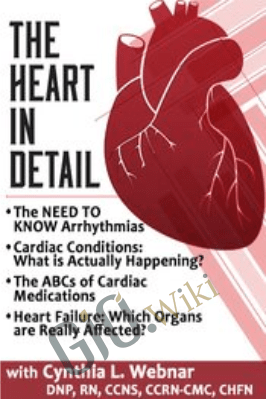 The Heart in Detail - Cynthia L. Webner