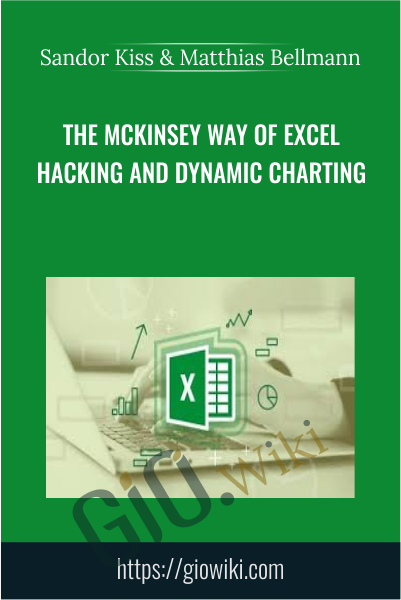 The McKinsey Way Of Excel Hacking and Dynamic Charting - Sandor Kiss & Matthias Bellmann