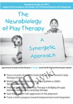The Neurobiology of Play Therapy: A Synergetic Approach - Lisa Dion