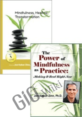 The Power of Mindfulness as Practice + Mindfulness, Healing and Transformation - Join Jon Kabat-Zinn