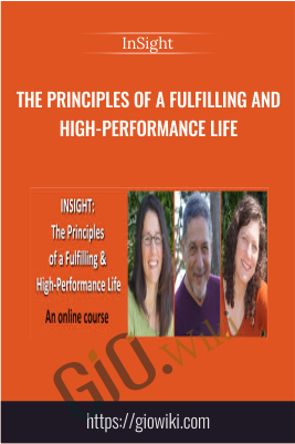 The Principles of a Fulfilling and High-Performance Life – INSIGHT