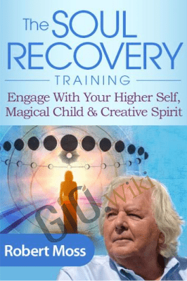 The Soul Recovery Training - Robert Moss