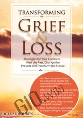 Transforming Grief & Loss: Strategies for Your Clients to Heal the Past, Change the Present and Transform the Future - Ligia M Houben