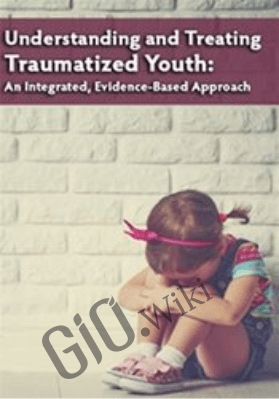 Understanding and Treating Traumatized Youth An Integrated, Evidence-Based Approach - Robert Lusk