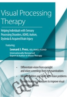 Visual Processing Therapy: Helping Individuals with Sensory Processing Disorders, ADHD, Autism, Dyslexia and Acquired Brain Injury - Leonard Press