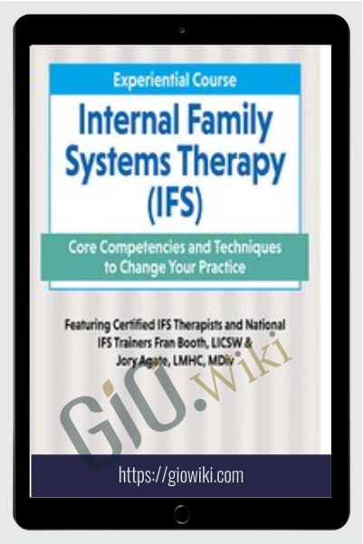 2-Day Experiential Course Internal Family Systeams Therapy (IFS): Core Competencies and Techniques to Change Your Practice - Fran D. Booth & Jory Agate Agate