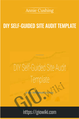 DIY Self-Guided Site Audit Template - Annie Cushing