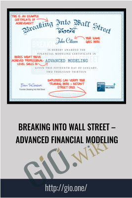 Breaking Into Wall Street – Advanced Financial Modeling