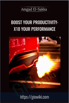 Boost your Productivity: x10 your Performance - Amgad El-Sakka