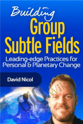 Building Group Subtle Fields - David Nicol