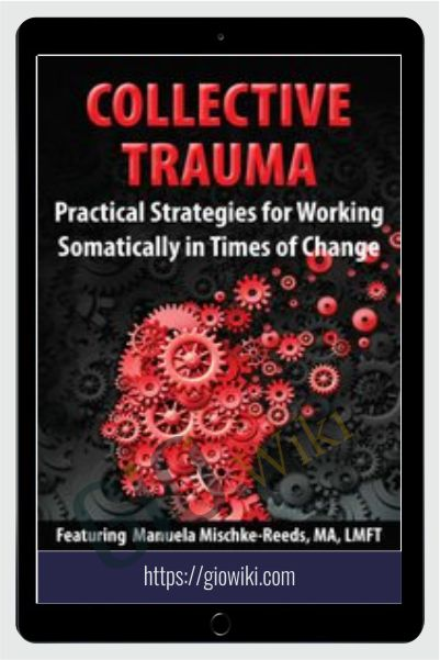 Collective Trauma: Practical Strategies for Working Somatically in Times of Change - Manuela Mischke-Reeds