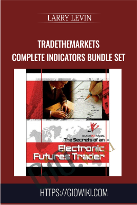 Secrets of an Electronic Futures Trader & DayTraders - Larry Levin