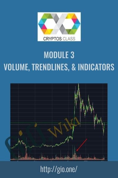 Module 3 Volume Trendlines & Indicators