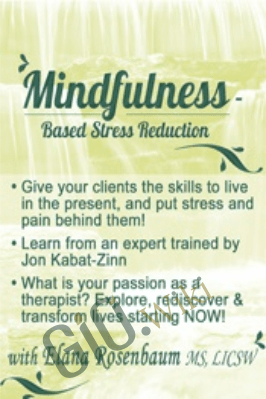 Mindfulness Based Stress Reduction - Elana Rosenbaum