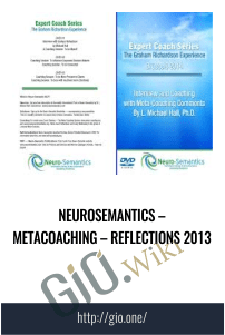 Neurosemantics – Metacoaching – Reflections 2013