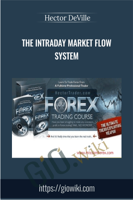 The Intraday Market Flow System - Hector DeVille