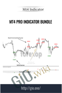 MT4 Pro Indicator Bundle