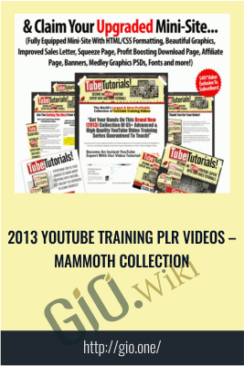 2013 Youtube Training PLR Videos – Mammoth Collection