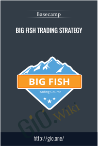 Big Fish Trading Strategy - Base Camp Trading
