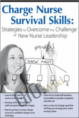 Charge Nurse Survival Skills: Strategies to Overcome the Challenge of New Nurse Leadership - Vivien Rosina Mudgett