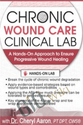 Chronic Wound Care Clinical Lab: A Hands-On Approach to Ensure Progressive Wound Healing - Cheryl Aaron