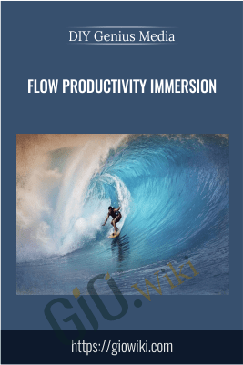 Flow Productivity Immersion – DIY Genius Media