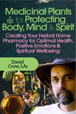 Medicinal Plants for Protecting the Body, Mind and Spirit - David Crow