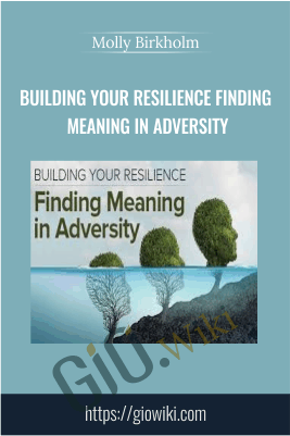 Building Your Resilience Finding Meaning in Adversity - Molly Birkholm